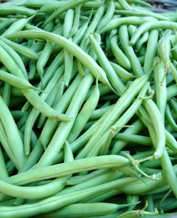 Green Beans Stock Photo - 15215471