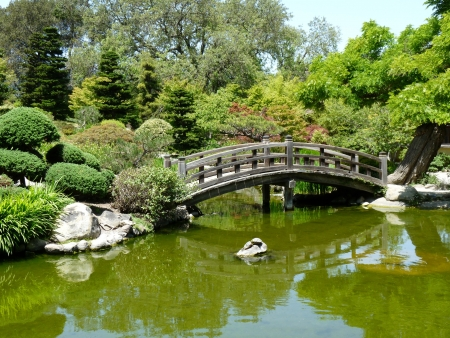 Bridge at a Japanese garden Stock fotó