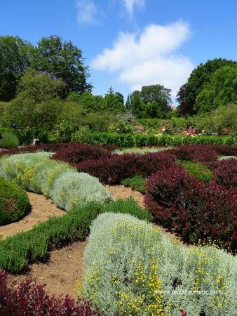 Multi-colored hedge garden Stock fotó