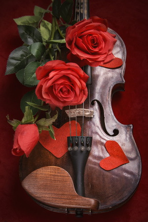 Romance and valentines day concept: old antique violin with lush red roses, on a dark red background Stock Photo