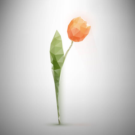 low light: Low-poly triangular style tulip vector illustration