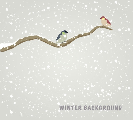 Two beautiful birds sitting on branch. Winter background.