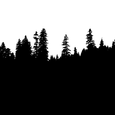 Panoramic view of the forest. Tree Silhouette. Vector illustration Vectores