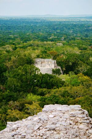 calakmul: Calakmul view from top