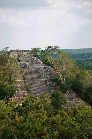 メキシコ、カラクムル遺跡のトップ 写真素材