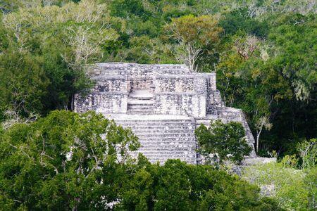 メキシコ、カラクムル遺跡のトップからの眺め 写真素材