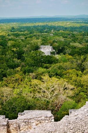 View from top of Calakmul ruins, mexico Banco de Imagens