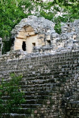 歴史的なマヤ都市カラクムル遺跡
