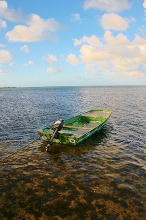 Lonely green boat on water