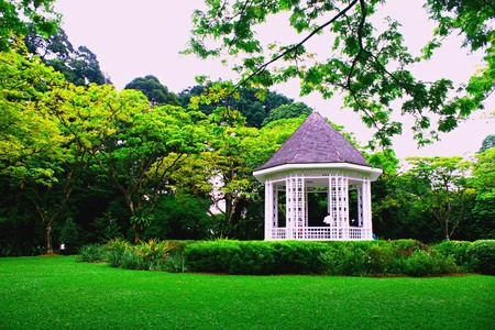 Botanic Garden Singapore ,Band stand, National Park Stock Photo