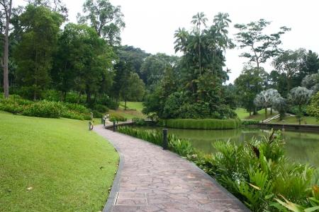 botanic: Botanic Garden Central lake Singapore Stock Photo
