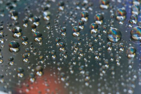 dewdrops: Close up view of the water drops background