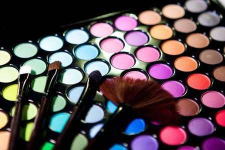 Makeup set. Professional multicolor eyeshadow palette Stock Photo - 9188100