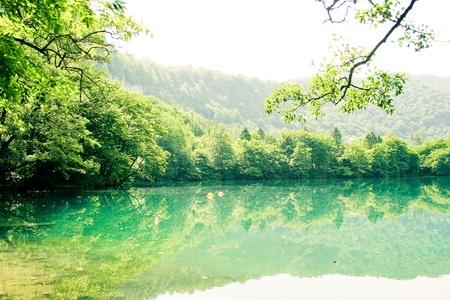 美しい湖の風景