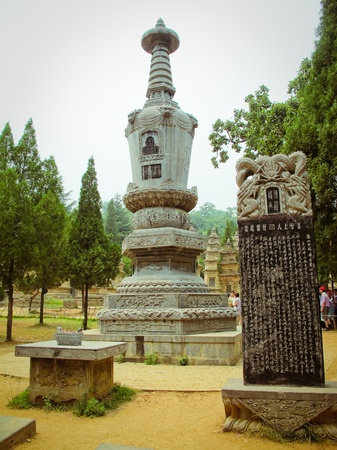 gung fu: Forest of pagoda in Shaolin Temple