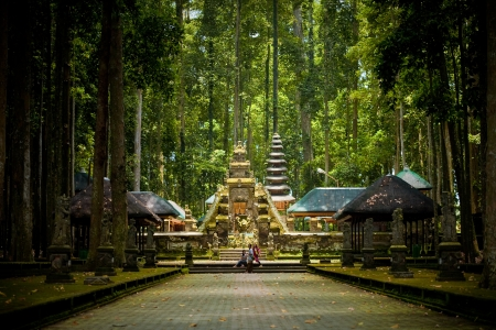 Monkey forest in Bali  Sangeh