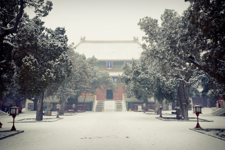Templo de Confucio en Beijing photo