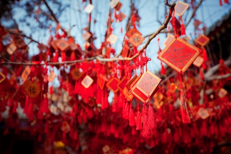 wish cards in a Buddhist temple in Beijing, China Фото со стока