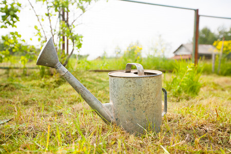 wateringcan: Old, rusty watering can standing on grass Stock Photo