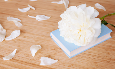 Peony flower and light blue book on wooden background