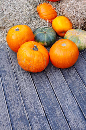 Pile of pumpkins sold at a market for halloween. Autumn decorations, pumpkins in various shapes and sizes. Top view
