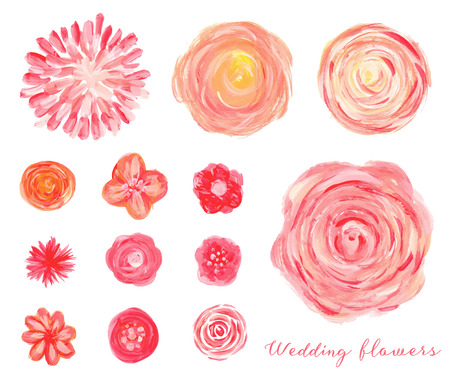 Hand drawn wedding flowers set. Isolated roses, peonies, ranunculus.