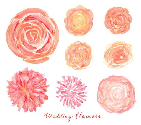 pfingstrosen: Hand gezeichnet Hochzeit Blumen. Isolierten Vektor-Rosen, Pfingstrosen, Hahnenfuß.