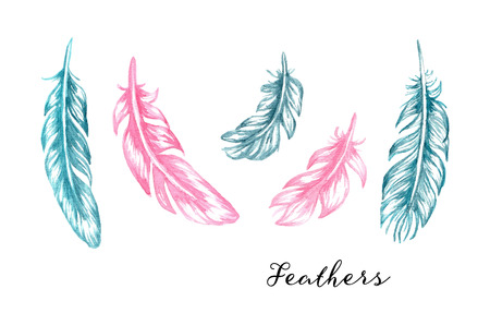Hand drawn blue and pink watercolor feathers set for your design Stock Illustratie