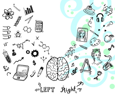 to the right: Hand drawn illustration of left and right brain function.