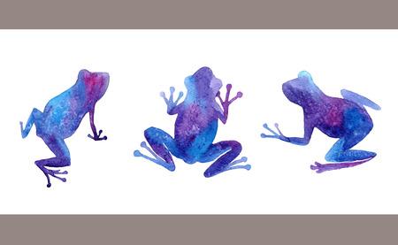 rana: Dibujado a mano ranas acuarela fijadas.