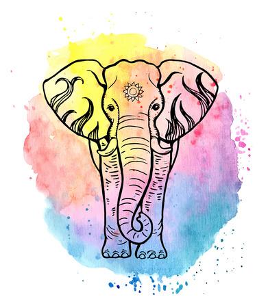 Hand getrokken olifant op een kleurrijke aquarel achtergrond