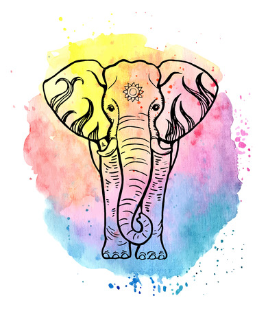Hand drawn elephant on a colorfull watercolor background