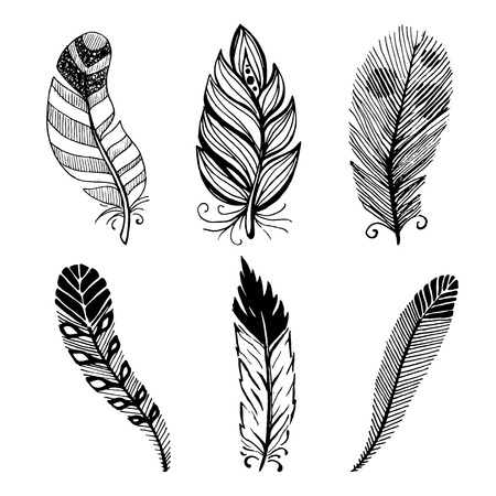 feather vector: Ethnic feather vector set. Hand-drawn illustration.