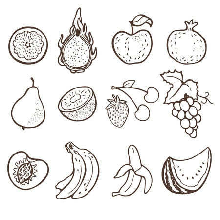 fruit du dragon: Main collection griffonnage fruits dessin�e.
