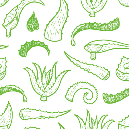 Seamless background with hand drawn aloe vera leaves.