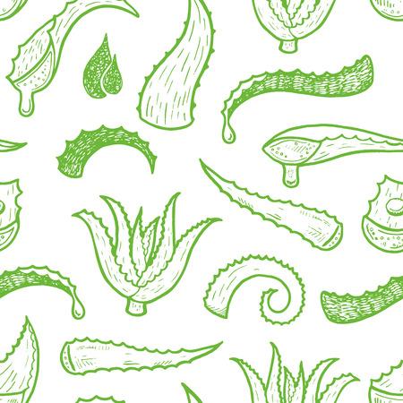 pflanzen: Nahtloser Hintergrund mit Hand gezeichnet Aloe Vera Blätter. Illustration