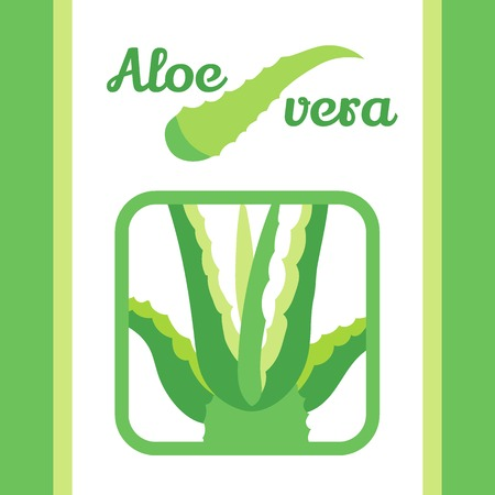 vera: aloe vera vector icon set