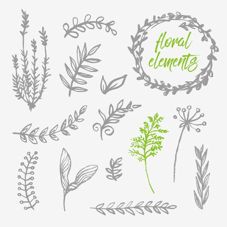 Hand drawn floral design elements Vectores
