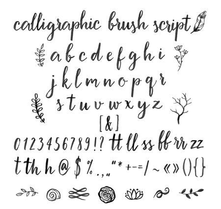 alphabet graffiti: Carattere vettore calligrafico con i numeri, e commerciale e simboli.