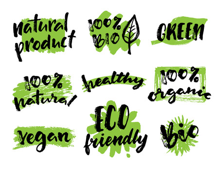 ecofriendly: Organic, vegan, natural food hand drawn labels. Organic tags and elements set for  organic products packaging.Vector illustrated bio detox logo. Eco-friendly design.