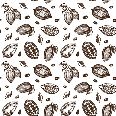 Seamless pattern with sketch cocoa beans