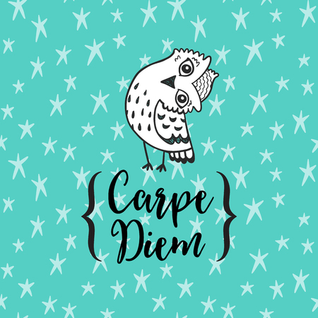 to seize: Carpe diem - latin phrase means Capture the moment.. Inspirational quote modern  illustration. calligraphy art.