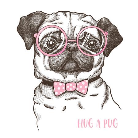 illustration of a hand drawn funny fashionable pug