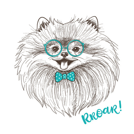 face illustration: Vector sketch illustration of a cute little Pomeranian with bow and round glasses. Fashionable dog print design. Smiley face of Pom puppy