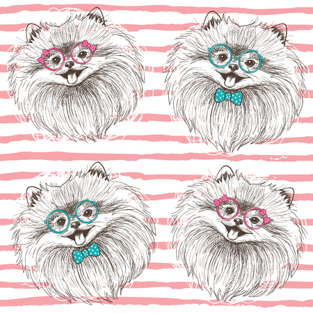 samoyed: Fashionable seamless vector pattern with hand drawn happy pomeranians boy and girl Illustration