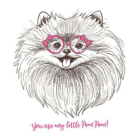 Ilustración del vector esbozo de un poco de Pomerania lindo con el arco y las gafas redondas. diseño de la impresión del perro de moda. cara sonriente del perrito de Pom