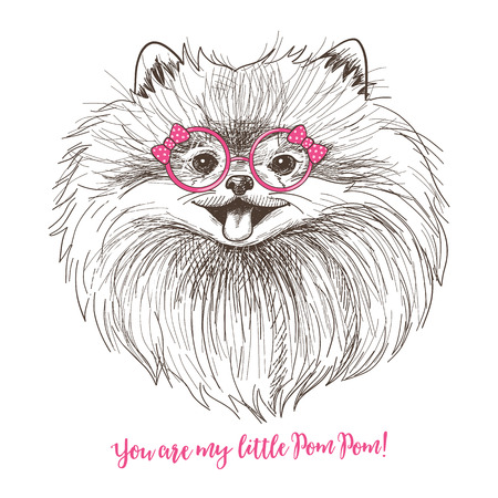 Vector sketch illustration of a cute little Pomeranian with bow and round glasses. Fashionable dog print design. Smiley face of Pom puppy 免版税图像 - 63011650