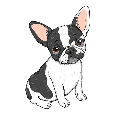 Vector Illustration der französischen Bulldogge der netten Karikatur, die auf einem weißen Hintergrund lokalisiert wird