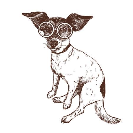 Vector illustratie van een hand getekende Jack Russell Terrier hond in een bril