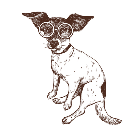 Vector illustration of a hand drawn jack russell terrier dog in glasses